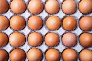 een close up van rauwe kippeneieren in eierpanelen foto