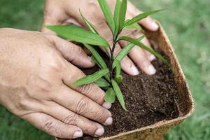 plant een boom in recycle bloempot concept van de aarde redden en het milieu wereld aarde dag foto