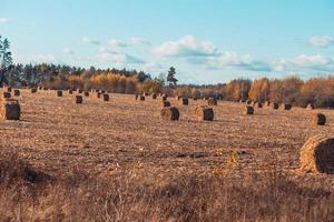 prachtig landschap van het platteland foto