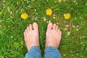 vrouwelijke voeten op het groene gras onder paardebloemen foto