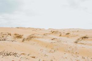 achtergrond van duinen van zand foto