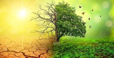 concept van milieubehoud en opwarming van de aarde foto