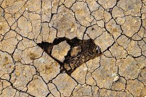 watertekort in de aarde foto