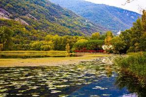 kleuren van de herfst op het meer foto