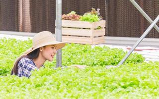 Aziatische vrouw controleert de kwaliteit van verse en biologische groenten van de boerenteelt van groenten en de hydrocultuur foto