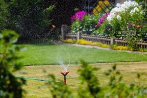 tuinsproeier drenken gras en bloemen foto