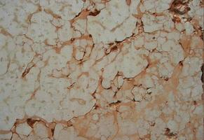 achtergrond van muur textuur foto