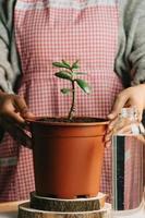 vrouw met een pot met een groeiende plant en een fles water foto