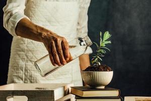 vrouw een groeiende plant water geven over een stapel boeken foto