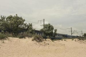 de trein passeert de woestijnolijven die bij de spoorlijn groeien foto