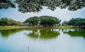 landschap bomen groen water reflectie meer foto