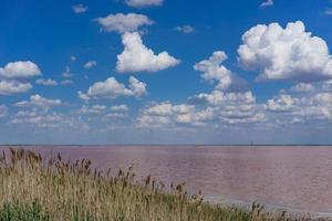 de bewolkte lucht boven het roze meer foto
