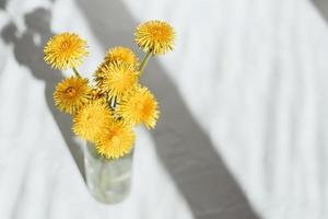 boeket van gele paardebloemen, op een lichte achtergrond. zomer concept. foto