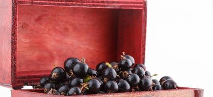 zwarte bes, bessen uit de gezonde biotuin zomersmaak wilde vruchten foto