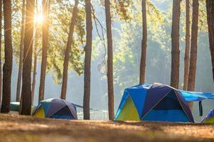 dansen kamperen in pang ung bos, mae hong son provincie, thailand foto