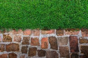 gras en baksteen achtergrond foto