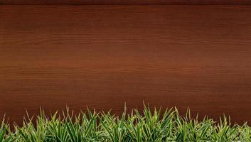 verse lente groen gras en blad plant over houten hek achtergrond. hout achtergrond gras frame foto