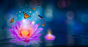 vlinders vliegen rond de paarse lotus drijvend op het water bokeh foto