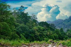 bos khiriwong landschap van kleine rivier en prachtige zonsondergang keeree wong verbod khiri wong dorp nakhon si thammarat thailand foto