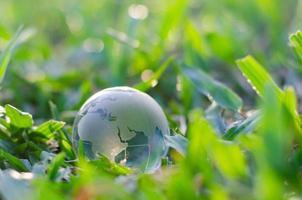 concept red de wereld red het milieu de wereld is in het gras van de groene bokeh achtergrond foto