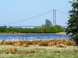 far ings natuurreservaat lincolnshire engeland, met uitzicht op de humber bridge foto