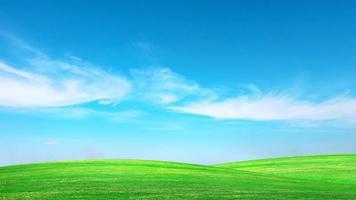 groene weide met blauwe hemel zomer weide achtergrond concept op een mooie dag. foto