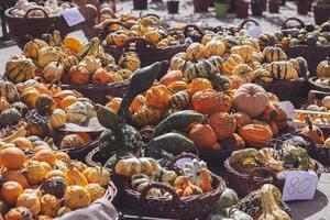 decoratieve minipompoenen en kalebassen in manden op groene marktkraam foto