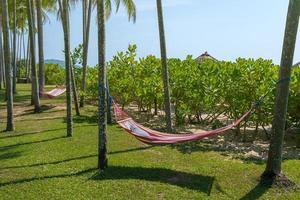 tropisch strand met hangmat onder de palmbomen in zonlicht foto