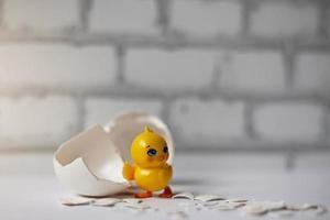 witte eierschaal van een gebroken kippenei met fragmenten en een uitgebroede kip geïsoleerd. Pasen foto