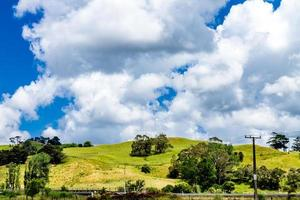 wijd open vergezichten rond Dargaville, Nieuw-Zeeland foto