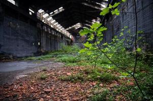 verlaten fabriek het interieur en wat ervan overblijft foto