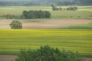 prachtig landschap en zonnestralen in de buurt van kiel, schleswig holstein, duitsland foto