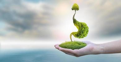 de boommaag is een 3d illustratie van het medische milieuconcept. foto
