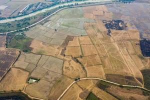 luchtfoto van vliegende drone van veldrijst met landschaps groen patroon natuur achtergrond, bovenaanzicht veldrijst foto