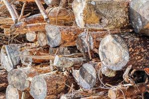 detail van een stapel gezaagd hout foto
