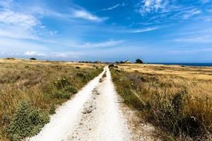 landschap bij selinunte in sicilië, italië foto