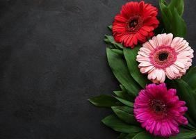 heldere gerberabloemen op een zwarte achtergrond foto