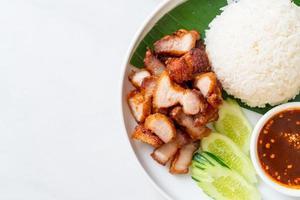 gebakken buikspek met rijst met pikante saus op aziatische wijze foto