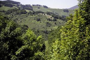 landschap met bergen foto