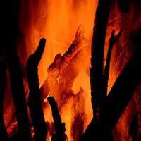 close-up van brandende houtblokken in de open haard op zwarte achtergrond foto