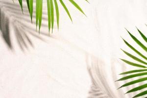 palmbladeren werpen schaduwen op het zand foto