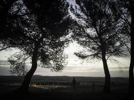 eenzame man in het bos foto