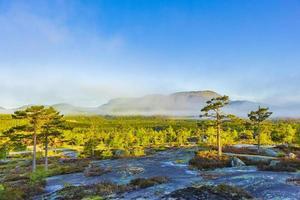 ochtend zonsopgang mist wolken en bergen natuur landschap nissedal noorwegen. foto