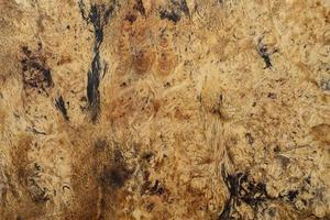 natuur burl hout foto