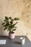 het minimalistische ontwerp van een thuiswerkbureau foto