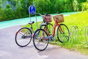 fietsenstalling in het park foto