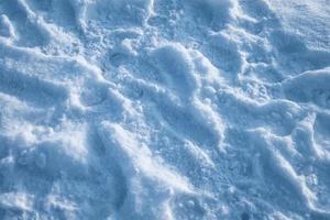 sneeuwwitje met zonlicht bedekt in het winterseizoen foto