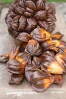 nypa-palmfruit in thailand, close-up van nypa-zaad in de natuur foto
