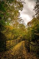schilderachtige uitzichten langs de klimplantroute van Virginia foto