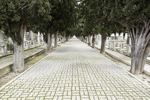 weg met diepte op een begraafplaats foto